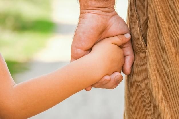 A de handen van een ouder en kind in het park