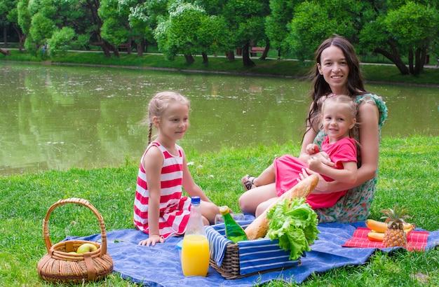 Aanbiddelijk meisje en gelukkige moeder die in het park picknicken