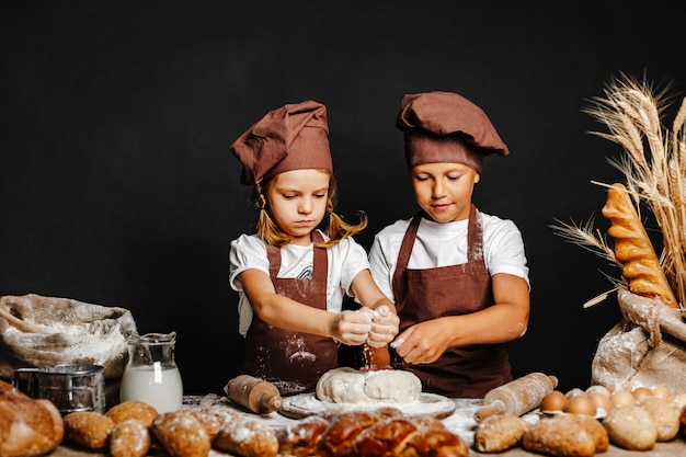 Aanbiddelijk meisje met broer het koken