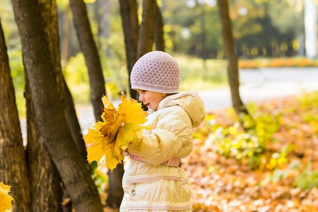 Aanbiddelijk meisje met herfstbladeren in het park