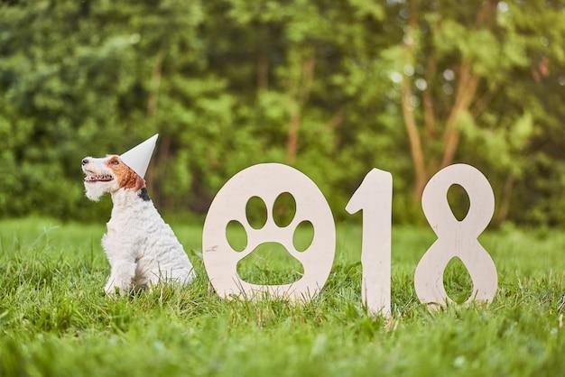 Aanbiddelijke gelukkige fox-terrierhond bij begroin van het park 2018 nieuwe jaar