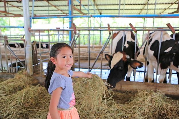 Aanbiddelijke kleine aziatische voedende koeien van het kindmeisje door droog stro