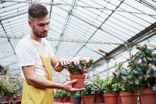 Aantrekkelijke mannelijke bebaarde boer houdt de vaas vast en zorgt voor de bloemen in de kas.