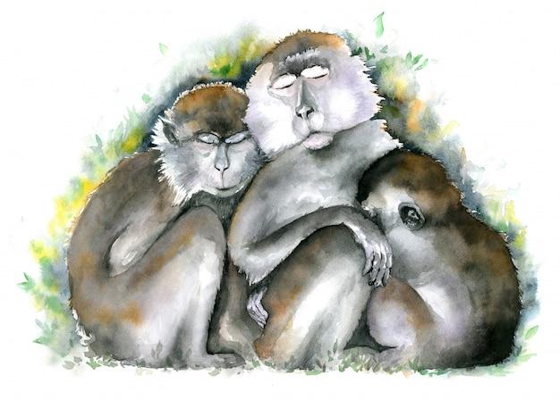 Aap familie. drie bruine monniken zitten samen met gesloten ogen. aquarel illustratie.