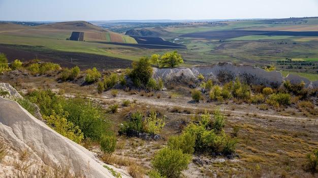 Aard van moldavië, struiken, schaars gras, uitgestrekte vlaktes met ingezaaide velden