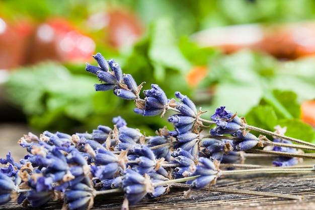 Aardbeien, lavendel en andere planten