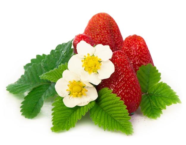 Aardbeien met bladeren