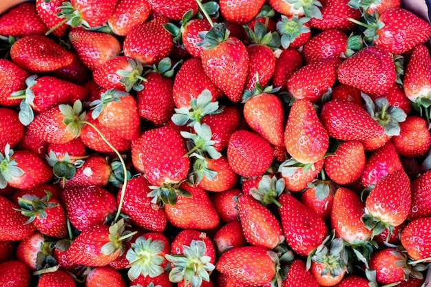 Aardbeien oppervlakte aardbei