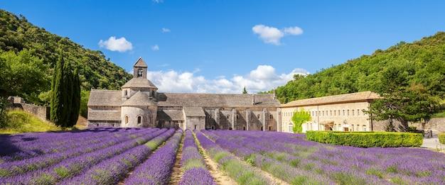 Abdij van senanque en bloeiende rijen lavendelbloemen. panoramisch zicht.