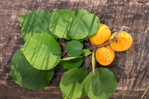 Abrikozen op tafel met schaduwen