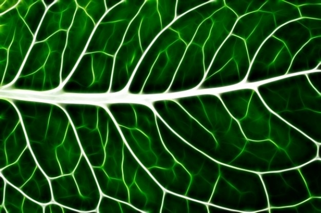 Abstract blad macro