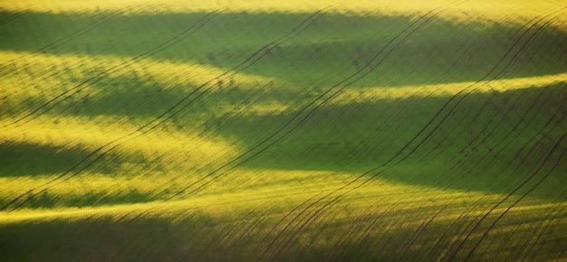 Abstract de lentelandschap met groene gebieden bij kleurrijke zonsondergang