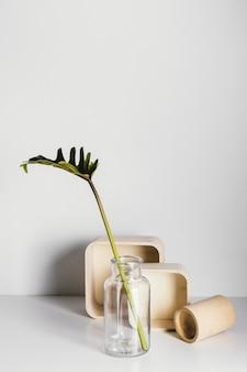 Abstract minimaal vooraanzicht van de plant