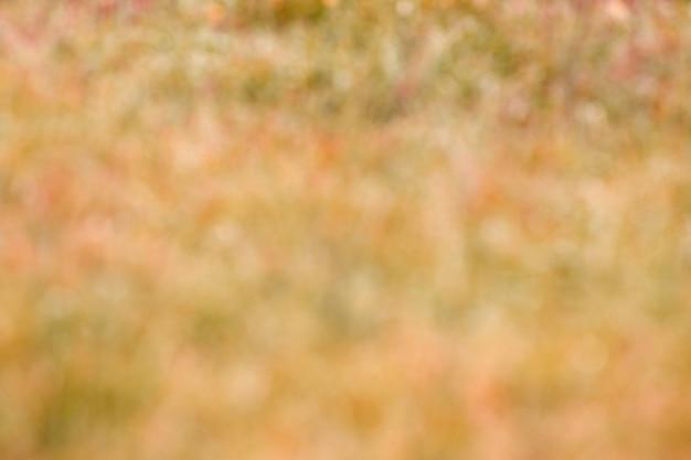 Abstract natuurlijk gras als achtergrond