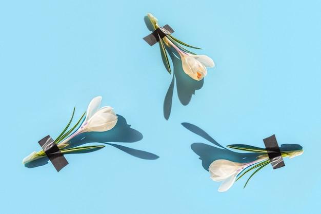 Abstract patroon van verse crocus bloemen onder hechtpleister op licht.