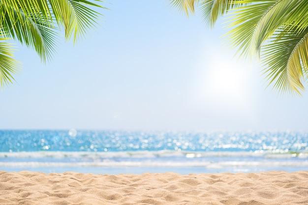 Abstract zeegezicht met palmboom, tropische strandachtergrond.