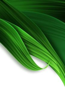 Abstracte achtergrond met groen gras close-up