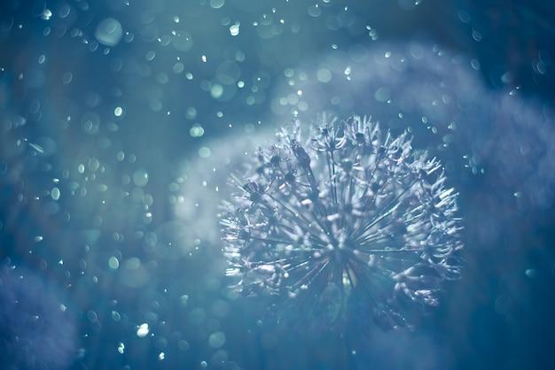 Abstracte blauwe achtergrond. mooie bloemen. getinte afbeelding