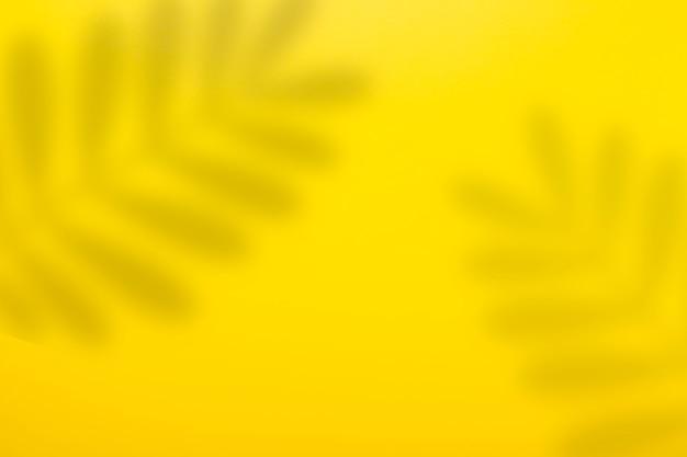 Abstracte gele achtergrond en schaduw van een blad van een tropische plant.