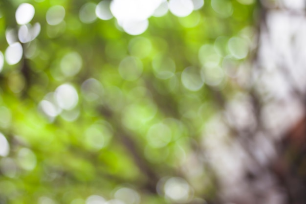 Abstracte groene natuur achtergrond.