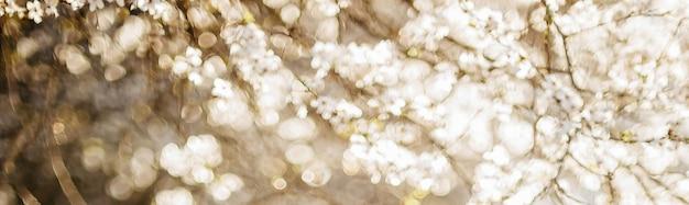 Abstracte lente wazig ruimte met bokeh-effecten