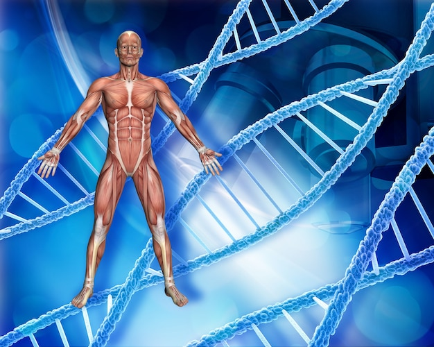Abstracte medische achtergrond met mannelijke figuur, dna-strengen en microscoop