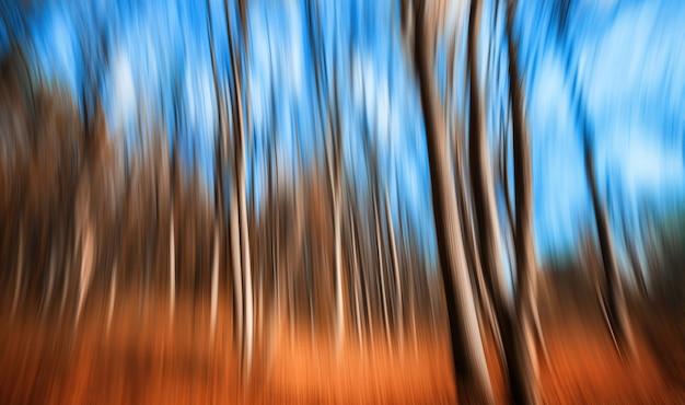 Abstracte natuurlijke achtergrond. bewegingsonscherpte van bomen in een herfst bos