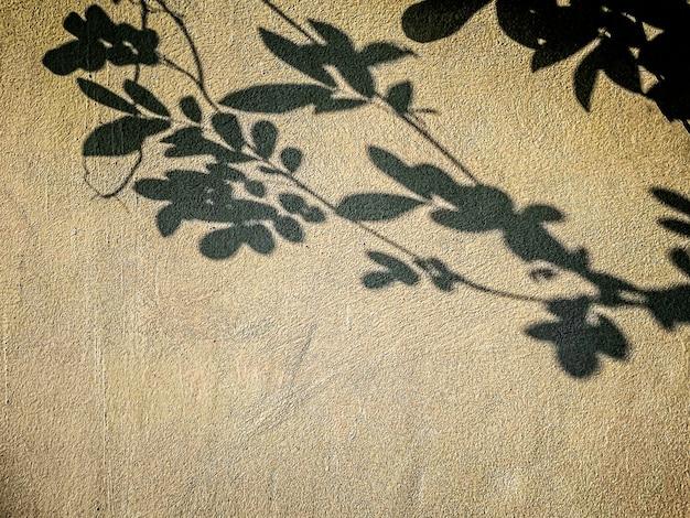 Abstracte schaduwachtergrond van natuurlijke bladerenboomtak die op muur vallen
