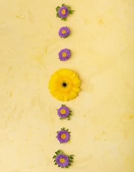 Abstracte streep van gele en violette madeliefjes