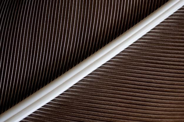 Abstracte vogelveer textuur