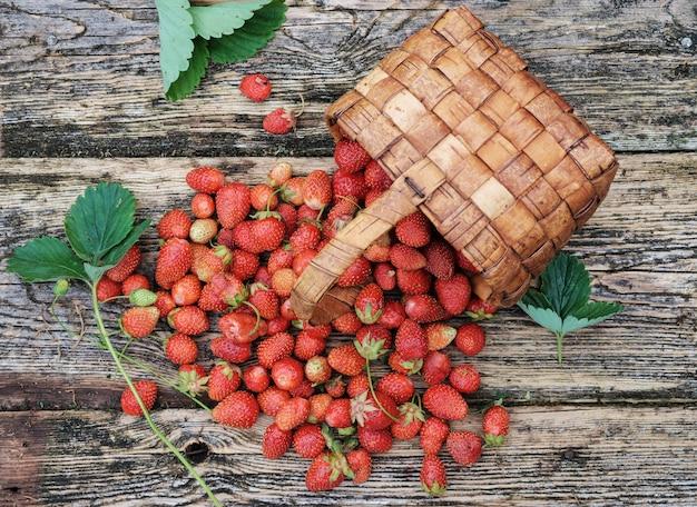 Achteloos verspreide verse tuinaardbeien op een houten tafel in een rieten mand