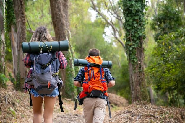 Achteraanzicht van backpackers lopen op bergachtig parcours. kaukasische wandelaars of reizigers die rugzakken dragen en samen in het bos wandelen. backpacken toerisme, avontuur en zomervakantie concept