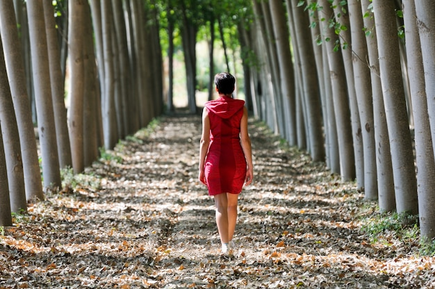 Achteraanzicht van de vrouw wandelen tussen de bomen