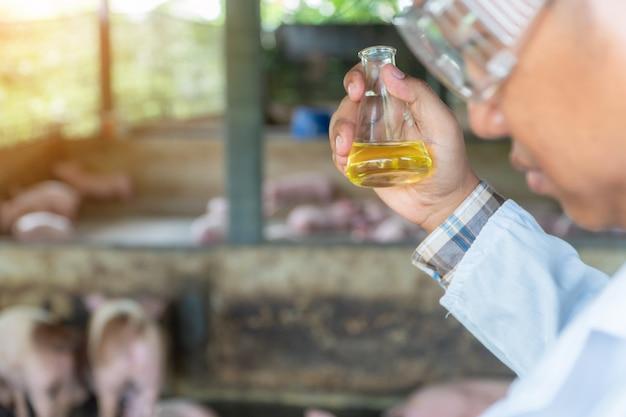Achteraanzicht van dierenarts arts die een beschermend pak draagt en een erlenmeyer-fles vasthoudt voor het controleren van mond- en klauwzeer