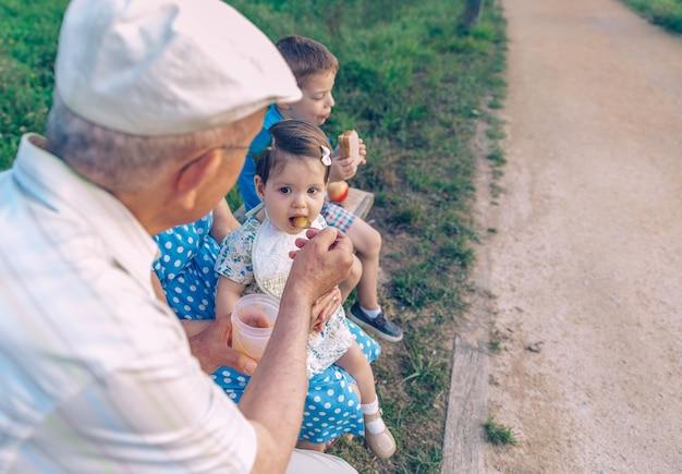 Achteraanzicht van een senior man die zich voedt met fruitpuree aan een schattig babymeisje dat over een senior vrouw in een bankje buiten zit. grootouders en kleinkinderen levensstijl concept.