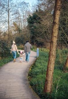 Achteraanzicht van familie hand in hand terwijl ze over een houten pad het bos in lopen