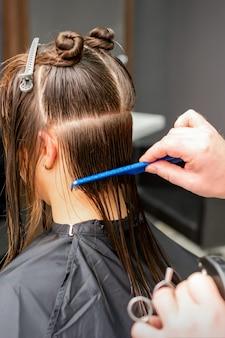 Achteraanzicht van mannelijke kapper nat haar kammen van jonge blanke vrouw verdeelt in secties in een kapsalon