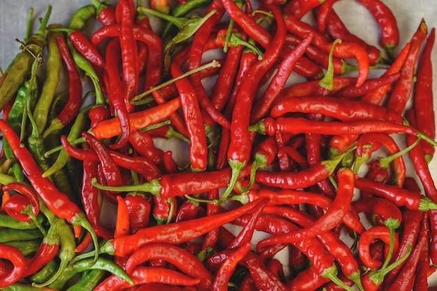 Achtergrond met bittere peper. kleurrijke peulen van bittere peper. chili peper. agrarische achtergrond met groenten. oogsten. verkoop van groenten. agrarisch bedrijf.