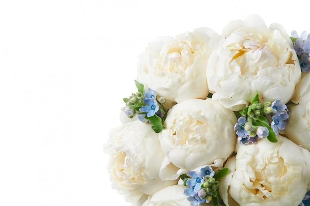 Achtergrond met mooie bloemenpioenen.