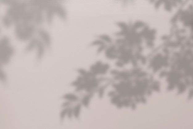 Achtergrond met schaduw van een boom