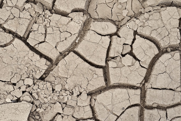 Achtergrond of textuur van grijze gebarsten vuile droge aarde of grond