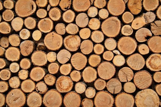 Achtergrond van boomstompen, natuurlijke houten achtergrond