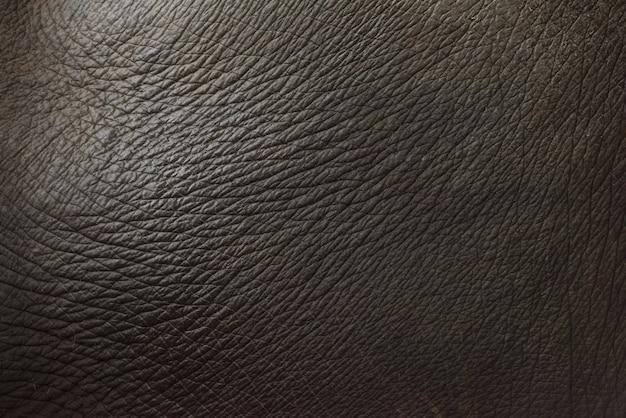 Achtergrond van de de textuur de abstracte grijze kleur van de olifantshuid dierlijke.