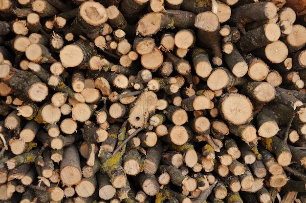 Achtergrond van de gekapte bomen