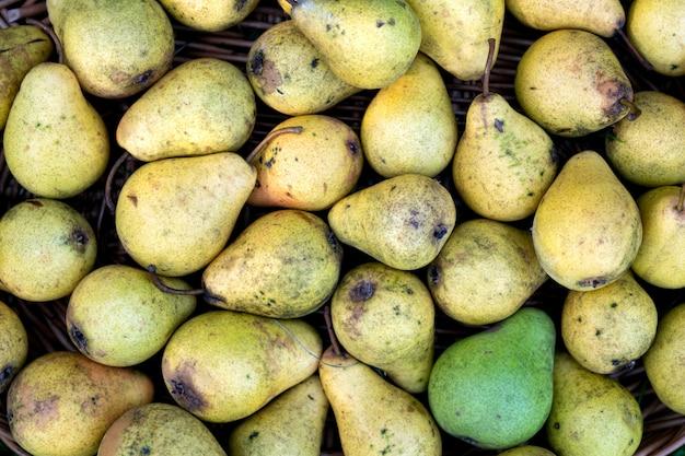 Achtergrond van de gele rijpe peren, vers verzameld uit een boom