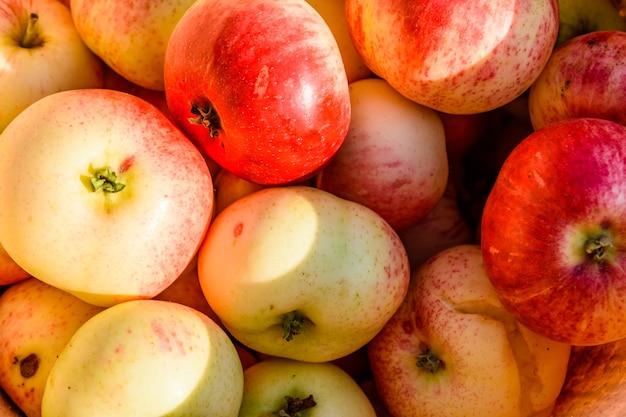 Achtergrond van de grote stapel rijpe appels