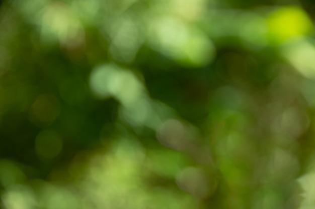 Achtergrond van defocused de abstracte groene bokeh