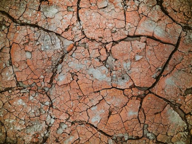 Achtergrond van droge gebarsten grond