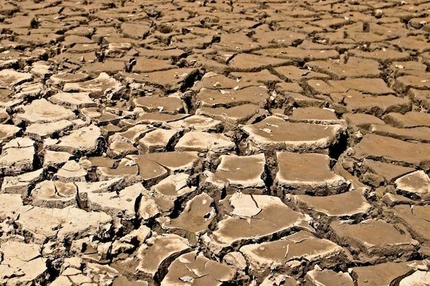 Achtergrond van gedroogde en gebarsten modderige grond