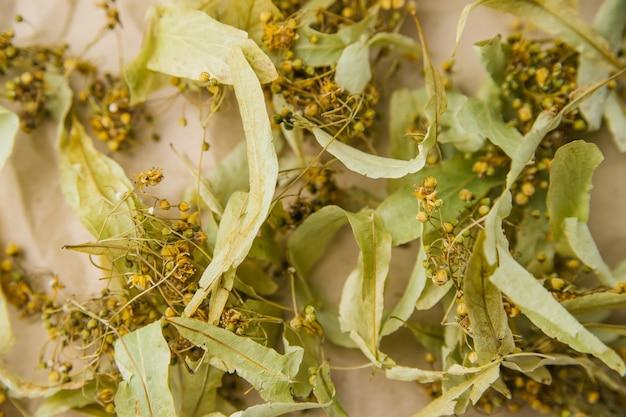 Achtergrond van gedroogde linde op kraftpapier. bloementhee als alternatieve methode om verkoudheid te behandelen.